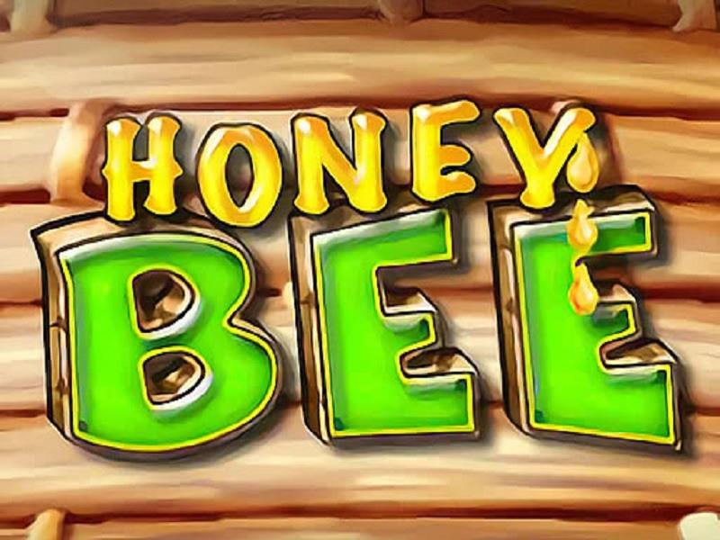 Honey Bee Spielen  Spaß Haben Und Gewinnen!
